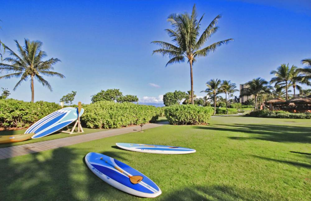 Rent a paddleboard from the beach activities kiosk
