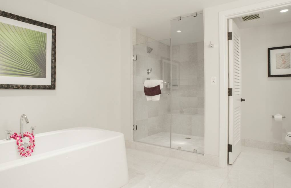 Walk-in shower and elegant vessel style soaking tub