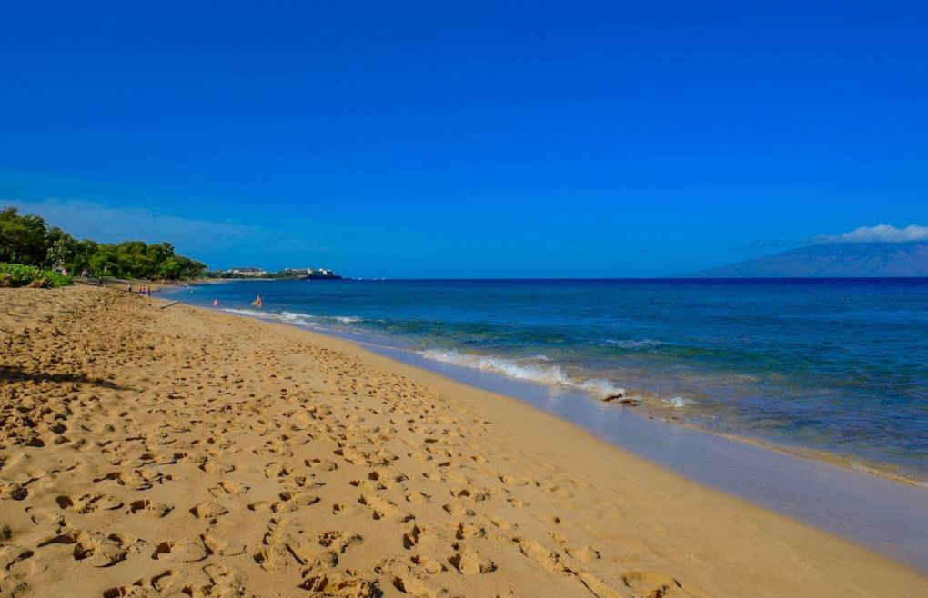 One of America's top beaches is just steps away