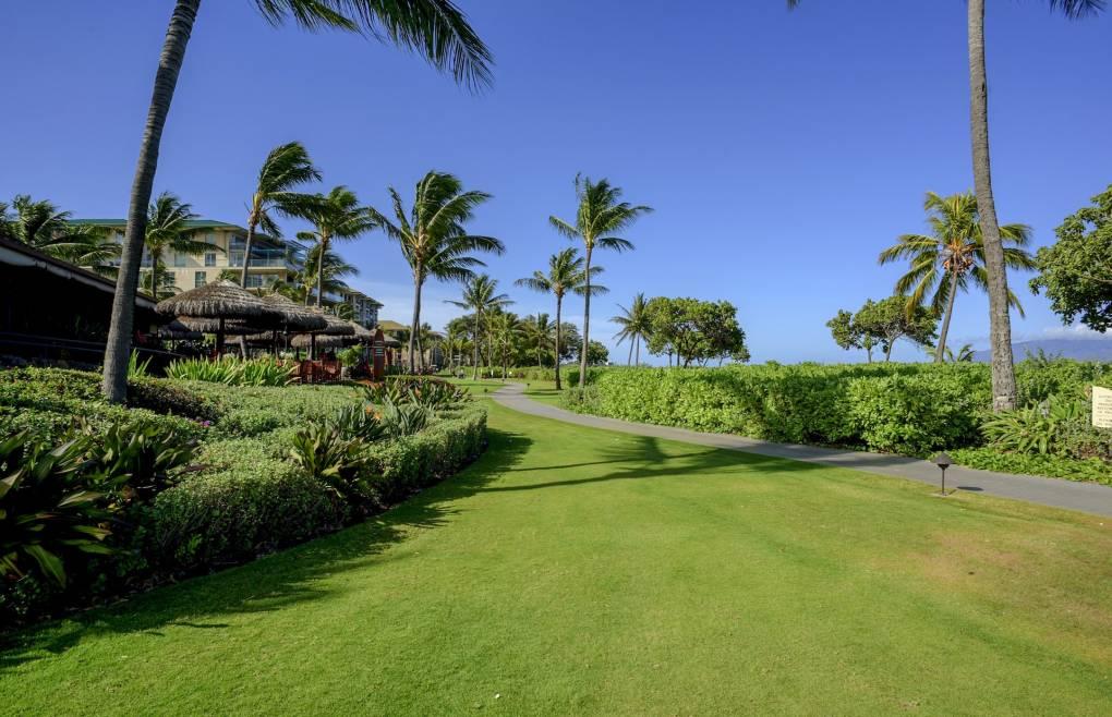 Take a stroll on the popular Kaanapali beach path