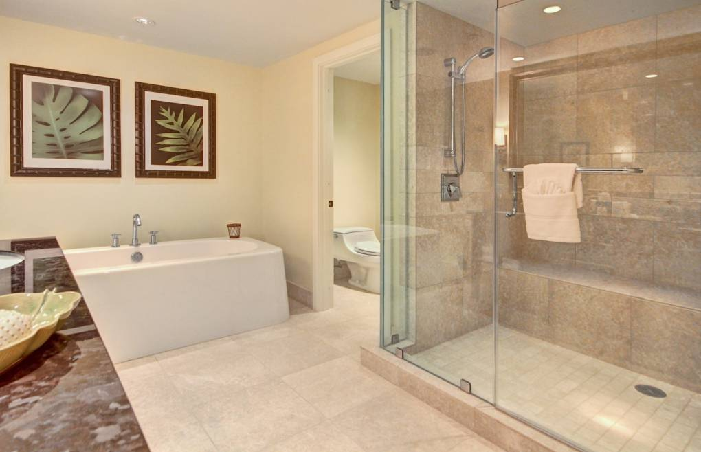The master bath offers a large walk-in shower and an elegant freestanding tub