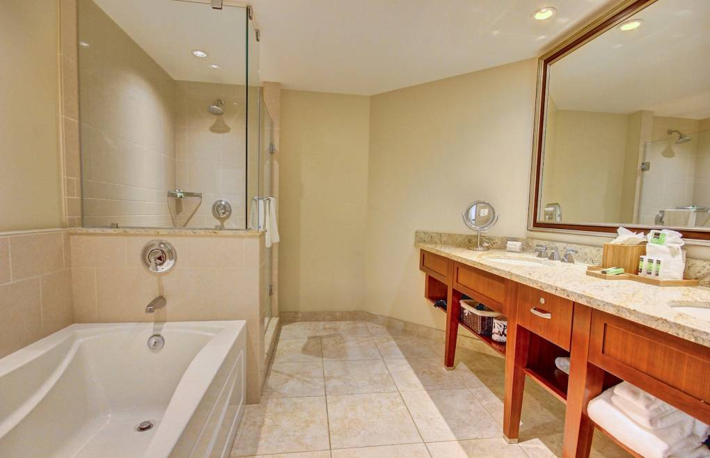 Master bathroom with double vanity, walk-in shower, and soaking tub