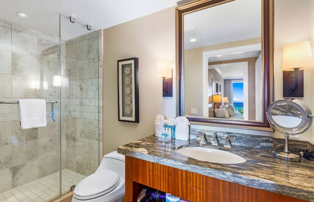 The guest bath features a granite vanity and a frameless glass walk-in shower
