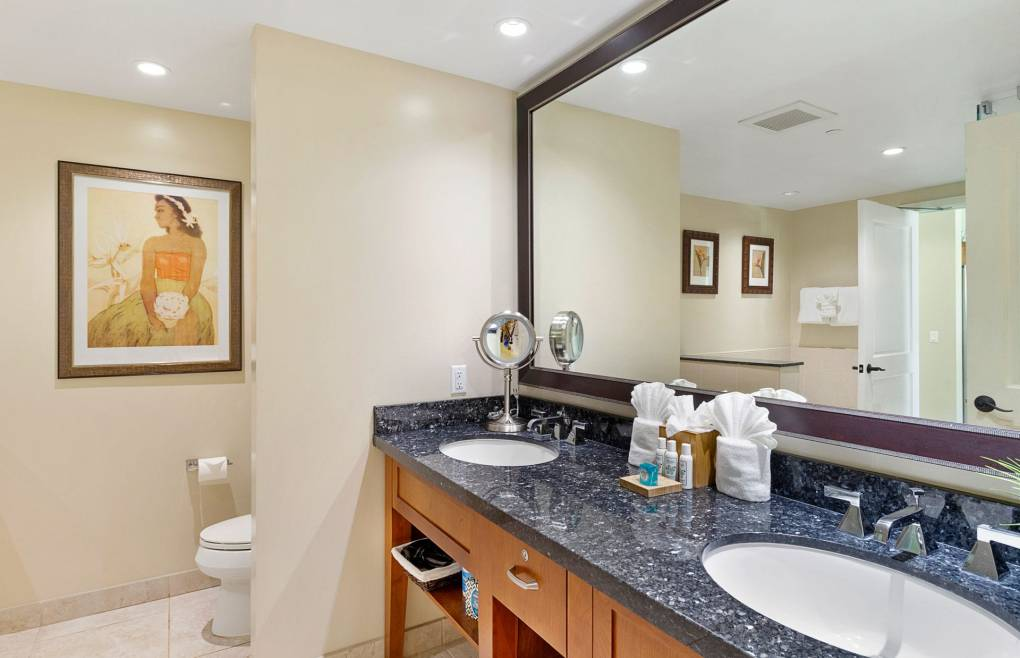 The guest bathroom offers a double granite vanity